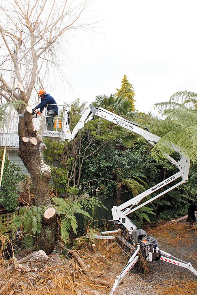 Spindelbenen säkrar en god stabilitet. Platform Basket liften går till exempel använda för att beskära träd.